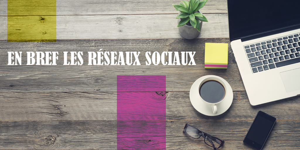 (Français) En bref les réseaux sociaux